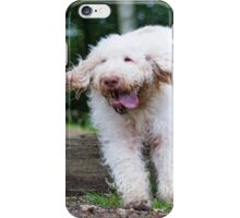 Italian Spinone in Action ~ Annabelle & Thane  iPhone Case/Skin