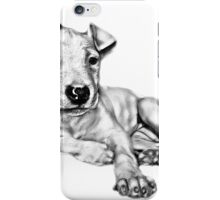 Baby Pittie #1a iPhone Case/Skin