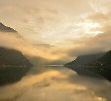 Fjord Mist by Steve