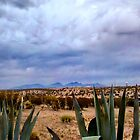 Angry Desert Sky by Carrie Blackwood