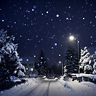 blue silent night by Dorit Fuhg