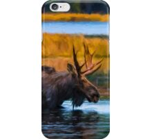 Algonquin Park Moose iPhone Case/Skin