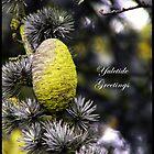 Yuletide greetings by K.J. Summerfield