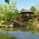 Japanese Garden by Paul Campbell  Photography
