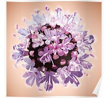 Ball of flowers Poster