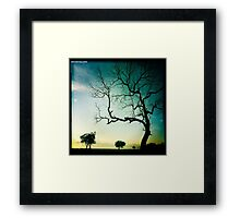 At First Light Framed Print