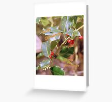 Holly Xmas(from my family to your family) Greeting Card