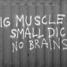 BIG MUSCLE.....  by Matt Bottos
