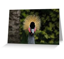 This world is so surprising! Greeting Card