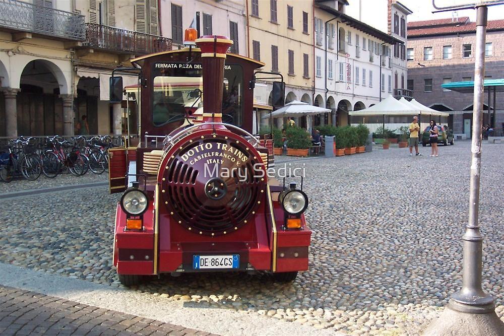 Dotto Train - Pavia, Italy  by Mary Sedici