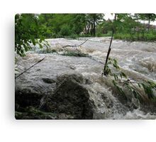 Torrent of Water Canvas Print