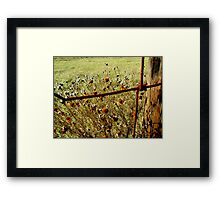 Wildflowers at the Cattle Fence Framed Print