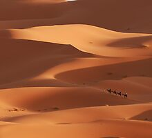 Caravan across the Sahara Desert by Georgina Steytler