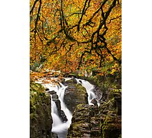 The Hermitage Dunkeld Perthshire Scotland Photographic Print