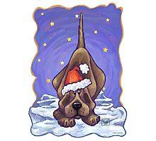Hound Dog Christmas Photographic Print
