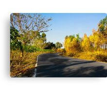 Sentiment of Perspective - Afternoon Countryside Road  Canvas Print