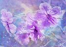 cosmic flowers by Teresa Pople