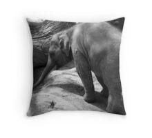 Animal Series Black and White 1 Throw Pillow