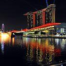 The Sands Marina Bay. Singapore. (2) by Ralph de Zilva