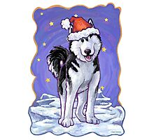 Husky Christmas Photographic Print