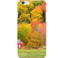 Autumn Colors Near Lake Ainslie  iPhone Case/Skin