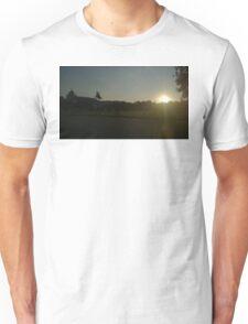 Vienna Silhouette Unisex T-Shirt