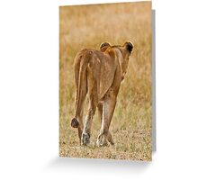 Lonely lioness Greeting Card