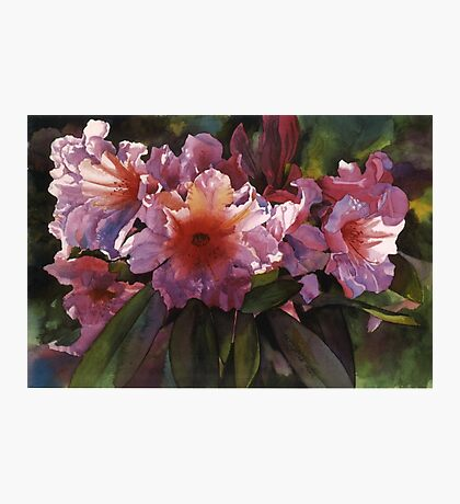 """Watercolor """"Autumn Gold"""" Rhododendron  Photographic Print"""