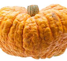 Orange pumpkin isolated on white background. by fotorobs