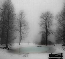 Pond in Winter by Mary Ann Reilly