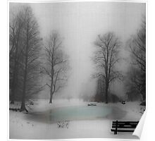 Pond in Winter Poster