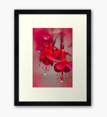 All Red Framed Print