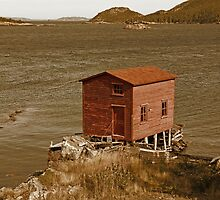 The Red Fishing House by Vickie Emms