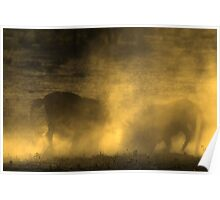 Sparring Wildebeest Poster