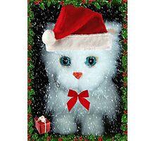 I've been a good kitty Santa!!! © Photographic Print