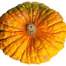Colourful pumpkin isolated on white background. by fotorobs