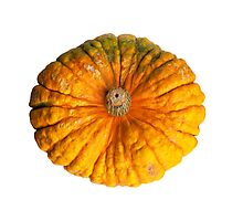 Colourful pumpkin isolated on white background. Photographic Print