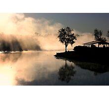 Tree Midst Fog Photographic Print