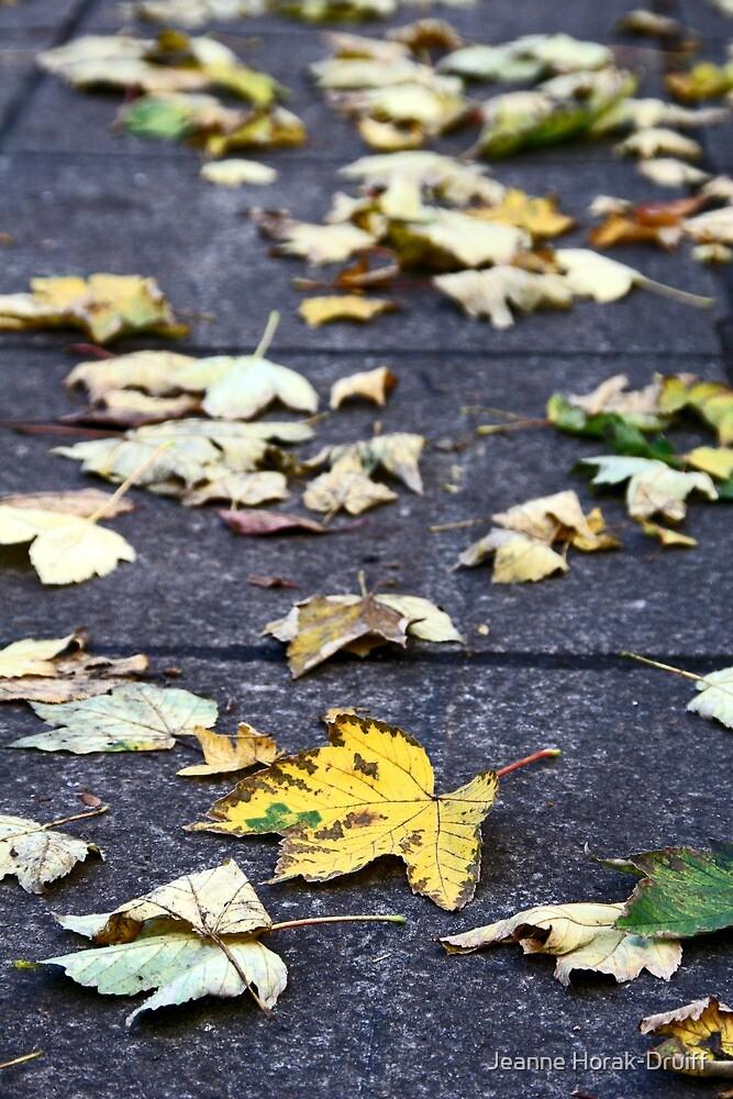 Yellow leaf, London 2010 by Jeanne Horak-Druiff