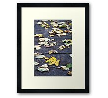 Yellow leaf, London 2010 Framed Print