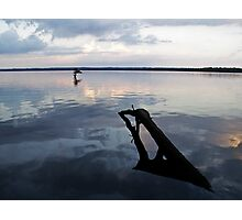 Reel Foot Lake Wood Photographic Print