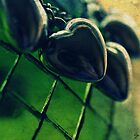 """""""The heart has reasons that reason does not understand."""" by Lorena María"""