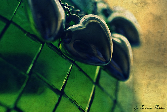 """The heart has reasons that reason does not understand."" by Lorena María"