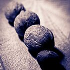 Black and white wallnuts by Patrizia  Corriero