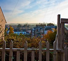 Fence View by MikeFakhoury