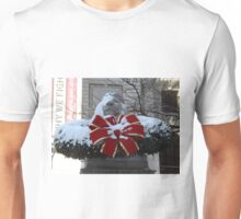New York Public Library Lion After A Snowfall, New York City Unisex T-Shirt