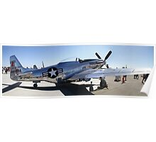 Shine On ~ P-51D Mustang  Poster