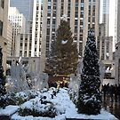 Rockefeller Center Christmas Tree, Decorations, After A Snowfall, New York City by lenspiro