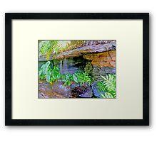 botanic garden HDR Framed Print