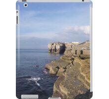 Portland Peak iPad Case/Skin